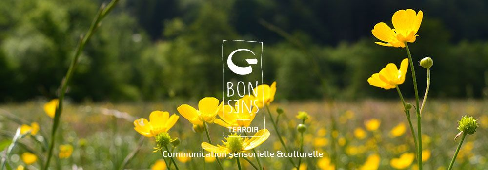 http://www.bonsens-terroir.fr/wp-content/uploads/2016/04/slider-accueil-2.jpg