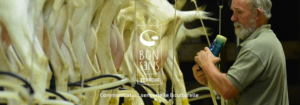 http://www.bonsens-terroir.fr/wp-content/uploads/2016/04/slider-accueil-5.jpg
